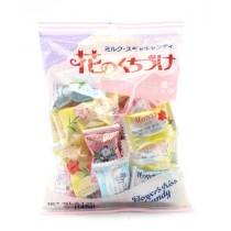 Bonbons durs aux fleurs KASUGAI 145g