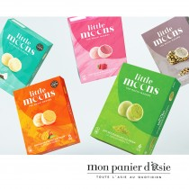 Mochi Glacé aux noisettes LITTLE MOONS 6pcs